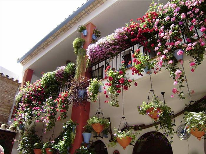Cordoba city of flowers