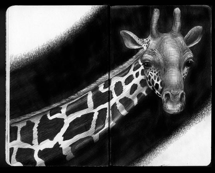 Animals in ink