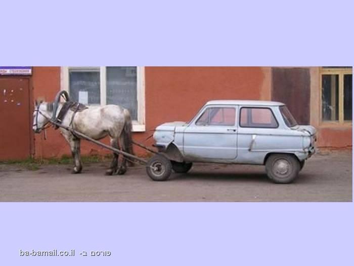 סוס דוחף אוטו