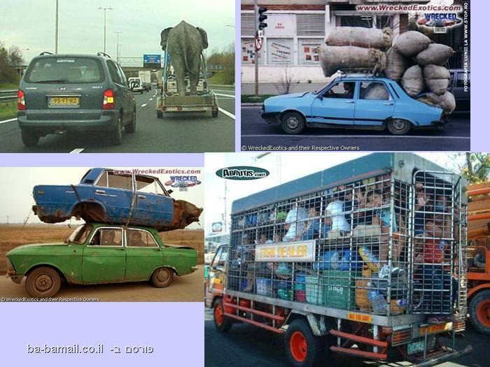 אוטו על אוטו, פיל מובל על נגרר, אוטו מלא בשקים, אנשים מובלים בעגלת גרירה